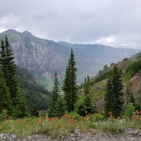 Imogene Pass Flowery View